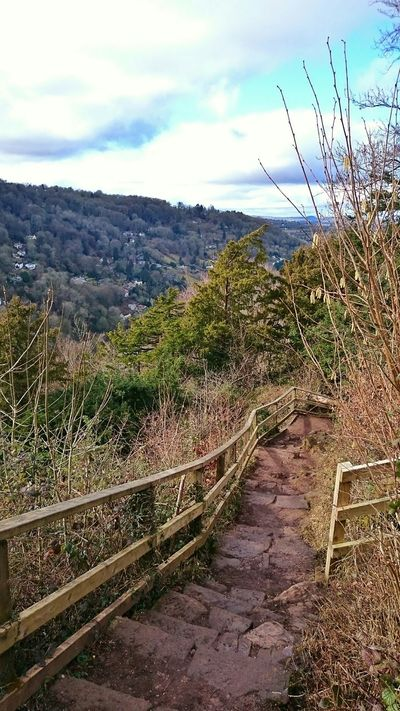 Going For A Walk EyeEm Best Shots - Landscape Landscape_Collection Great Views On The Trail Enjoying Life Walking Footpath Symonds Yat