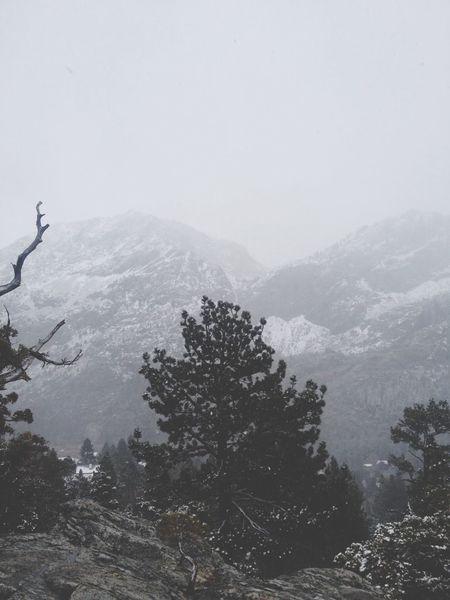 Snow Stunning Godsbeautifulcreation