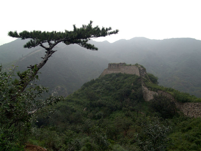 Ancient Ancient Civilization Architecture Beauty In Nature Built Structure Chinese Wall Day Fog Great Wall Of China History Huanghua Mountain Mountain Range Nature No People Outdoors Scenics Sky Tranquility Travel Destinations Tree