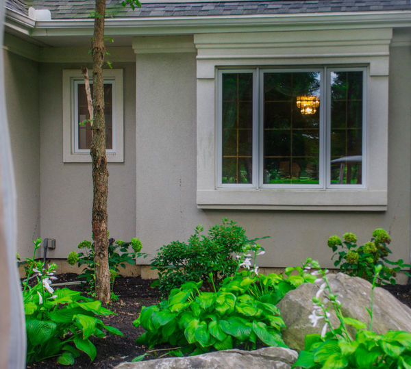Architecture Building Building Exterior Built Structure Day Door Entrance Glass - Material Green Color Growth House Houseplant Leaf Nature No People Outdoors Plant Plant Part Potted Plant Residential District Window