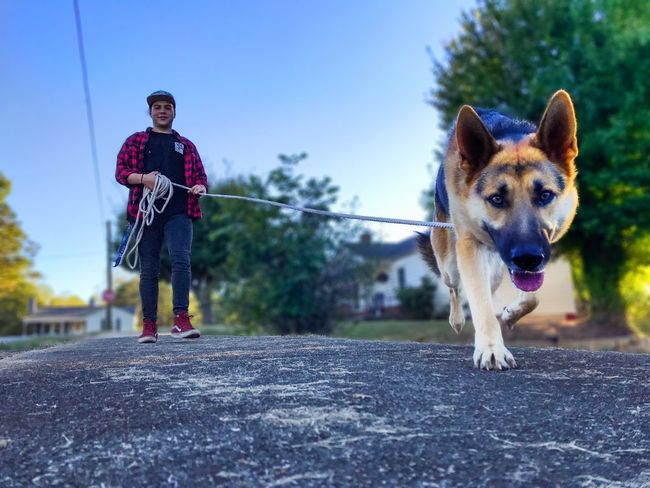 Dog Pets Full Length Domestic Animals Outdoors One Animal Animal Themes Portrait Looking At Camera Day One Person Happiness Smiling Mammal Lifestyles Real People Sky Tree Young Adult Adult