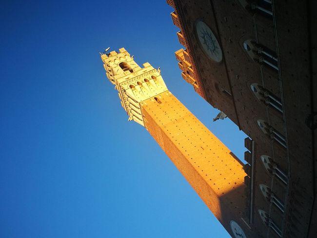 Siena, Torre del Mangia, Piazza Del Campo Luci E Colori Contrasti Blue Sky Wintertime Punti Di Vista Smartphonephotography