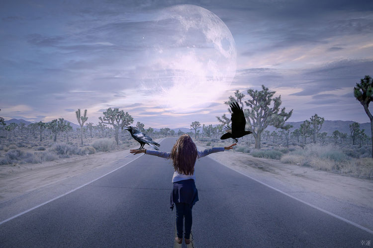 be free Road Street Child Girl Raven Moon Moonlight Melancholic Landscapes Melancholy Sky Journey Photomanipulation Photoshop Surreal Surrealism Fantasy ArtWork Digital Art Foggy Be Free Lucky's Colors Atmospheric Mood Shootermag Rear View Landscape