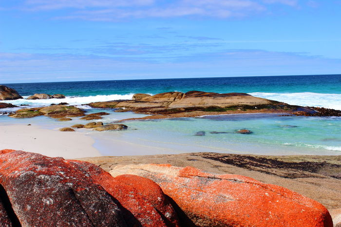 Australia Australian Landscape Bay Of Fire Bay Of Fires Beauty In Nature Nature Tasmania TasmaniaAustralia Ocean Coast Horizon Over Water Rockformation Coastline Clear Sky No People Water Outdoors Rock - Object Beach Day Landscape Sand Sea Sky Blue