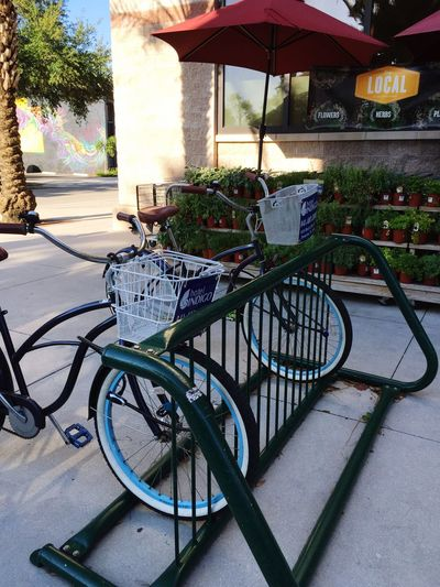 Indigo Hotel bikes at Whole Foods Market Downtown Sarasota Florida Open Edit
