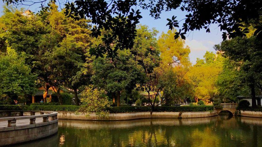 秋。 Autumn Lake