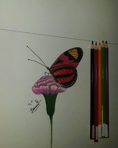 Landing. Eyemphotography Flower Eyemnaturelover Art, Drawing, Creativity Drawingwork Butterfly Butterfly Drawing. ArtWork Pencil Drawing My Drawing