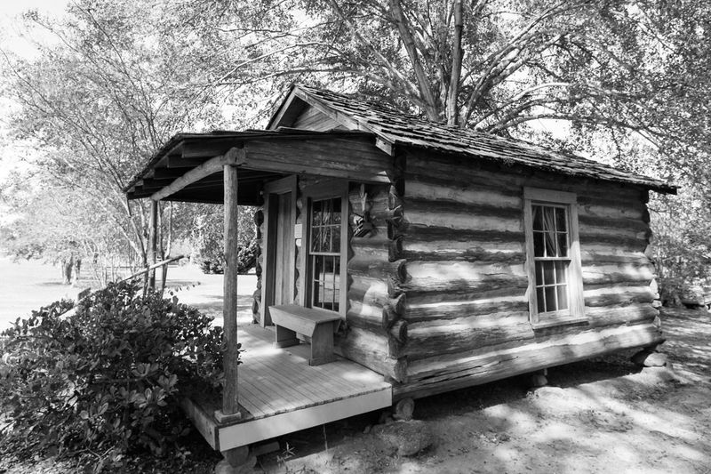 Antique Struc Architecture Bare Tree Building Exterior Built Structure Day Exterior Growth House Log Cabin Log Cabin Exter Nature No People Outdoors Residential Building Residential Structure Sky Tranquility Tree Weather Home Is Where The Art Is