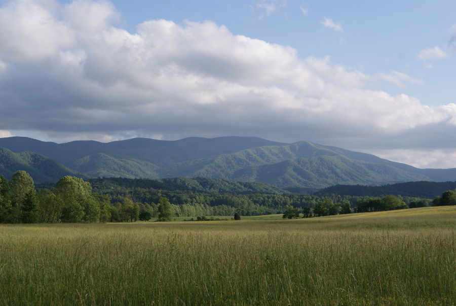 Beauty In Nature Cades Cove Cloud Cloud - Sky Countryside Field Fields Grass Great Smoky Mountains National Park Green Color Growth Idyllic Landscape Mountain Mountain Range Mountain View Mountains And Sky Nature Non-urban Scene Rural Scene Scenics Sky Tennessee Mountains Tranquil Scene Tranquility