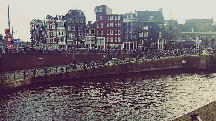 Amsterdam is so beautiful! Bikes Bikes Bikes Bikes Of Amsterdam Amsterdam Canal Buildings First Eyeem Photo
