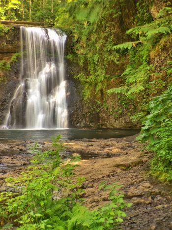 Silver falls Oregon Silver Falls Oregon