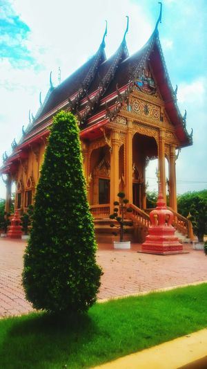 The elegance of Thai tample Architecture Outdoors Sky Tree Day Beautiful Tample Travel Thailand Travel Thai Tample Tample Nature Landscape