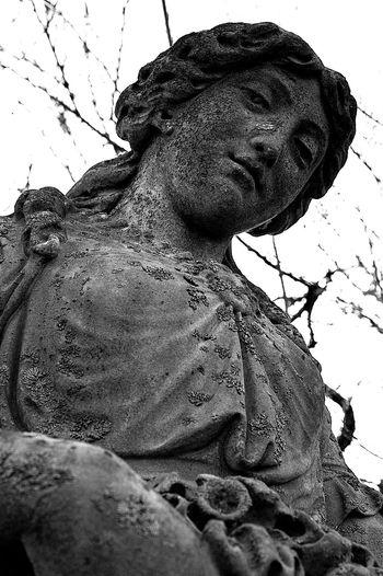 far away gaze Cemetery Photography Blackandwhite Photography Photography Angel