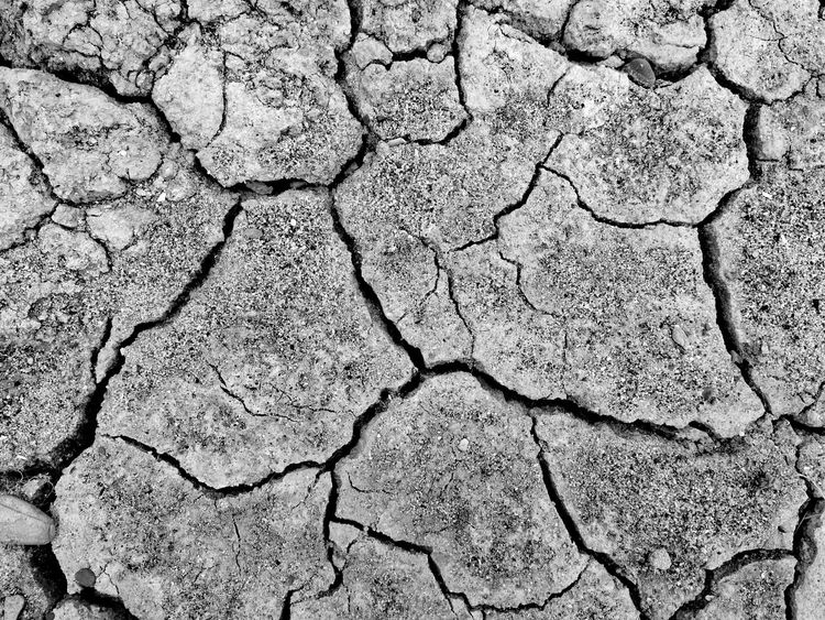 Scorched earth☀, background, mono. Cracked Full Frame Backgrounds Textured  Drought Arid Climate Environmental Issues Rough Close-up Textures In Nature Textures And Shapes Textures And Surfaces Calming BackgroundDrought Scorched No People Pattern Textured  HuaweiP9Photography High Angle View Nature Monochrome Monochrome Photography Mono