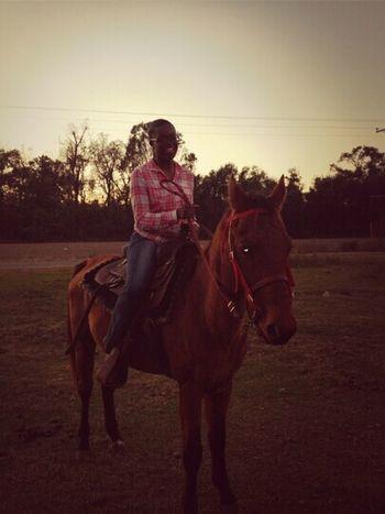 I miss riding horses lol