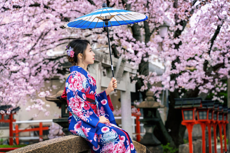 Asian woman wearing japanese traditional kimono and cherry blossom in spring, Kyoto temple in Japan. Flower Plant Flowering Plant Umbrella Nature Tree One Person Women Cherry Blossom Fragility Blossom Springtime Beauty In Nature Lifestyles Kimono Young Adult Growth Traditional Clothing Freshness Pink Color Cherry Tree Outdoors Beautiful Woman