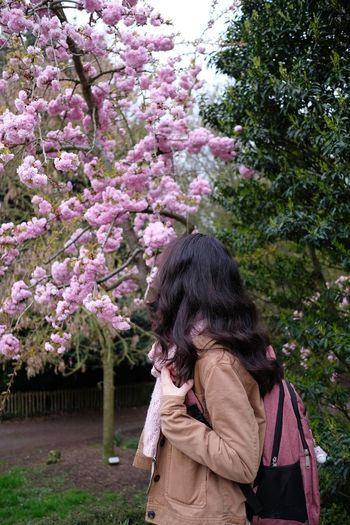 Rear view of woman standing by pink flowering tree