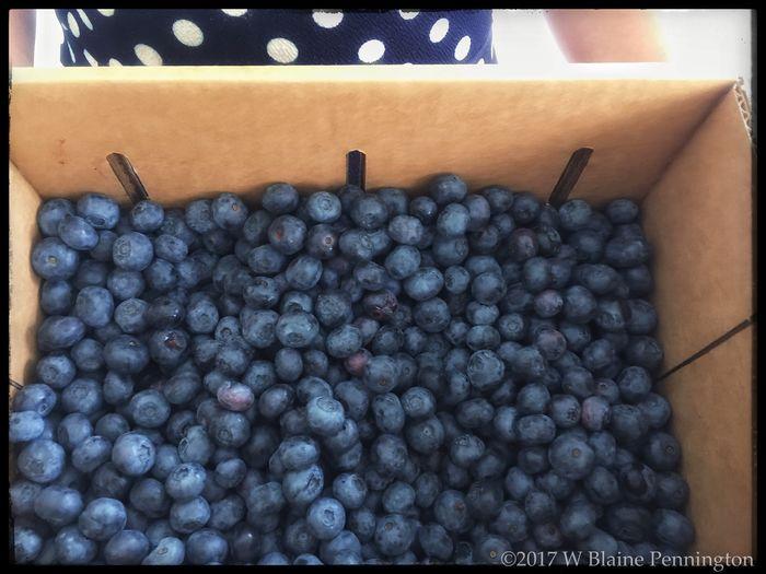 Yum! Fresh Blueberries And Love!