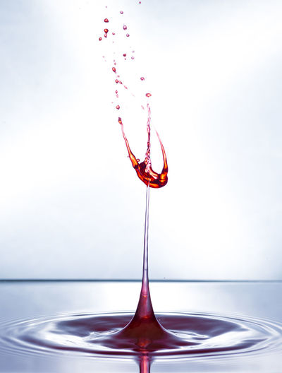 Alcohol Close-up Day Drink Freshness High-speed Photography Indoors  Motion No People Red Splashing Water Wineglass