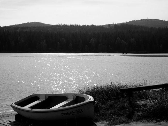 Lipno Water Boat Nature Summertime OlympusPEN