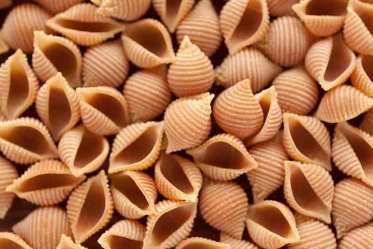 Pepper Conchiglie pasta background. Conchiglie Conchiglie Pasta Pepper Conchiglie Pepper Pasta Background Italian Pasta Natural Light Background Close Up Dry Pasta Italian Food No People Pasta Studio Photography Food And Drink Food Close-up Abundance