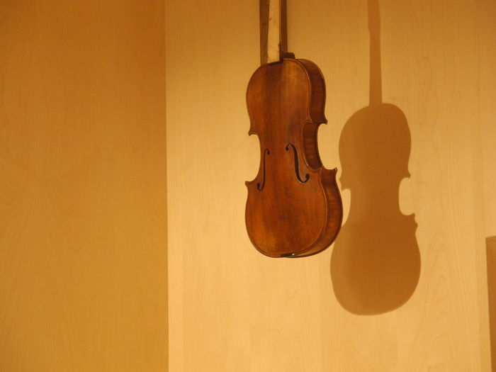 Violin hanging on yellow wall