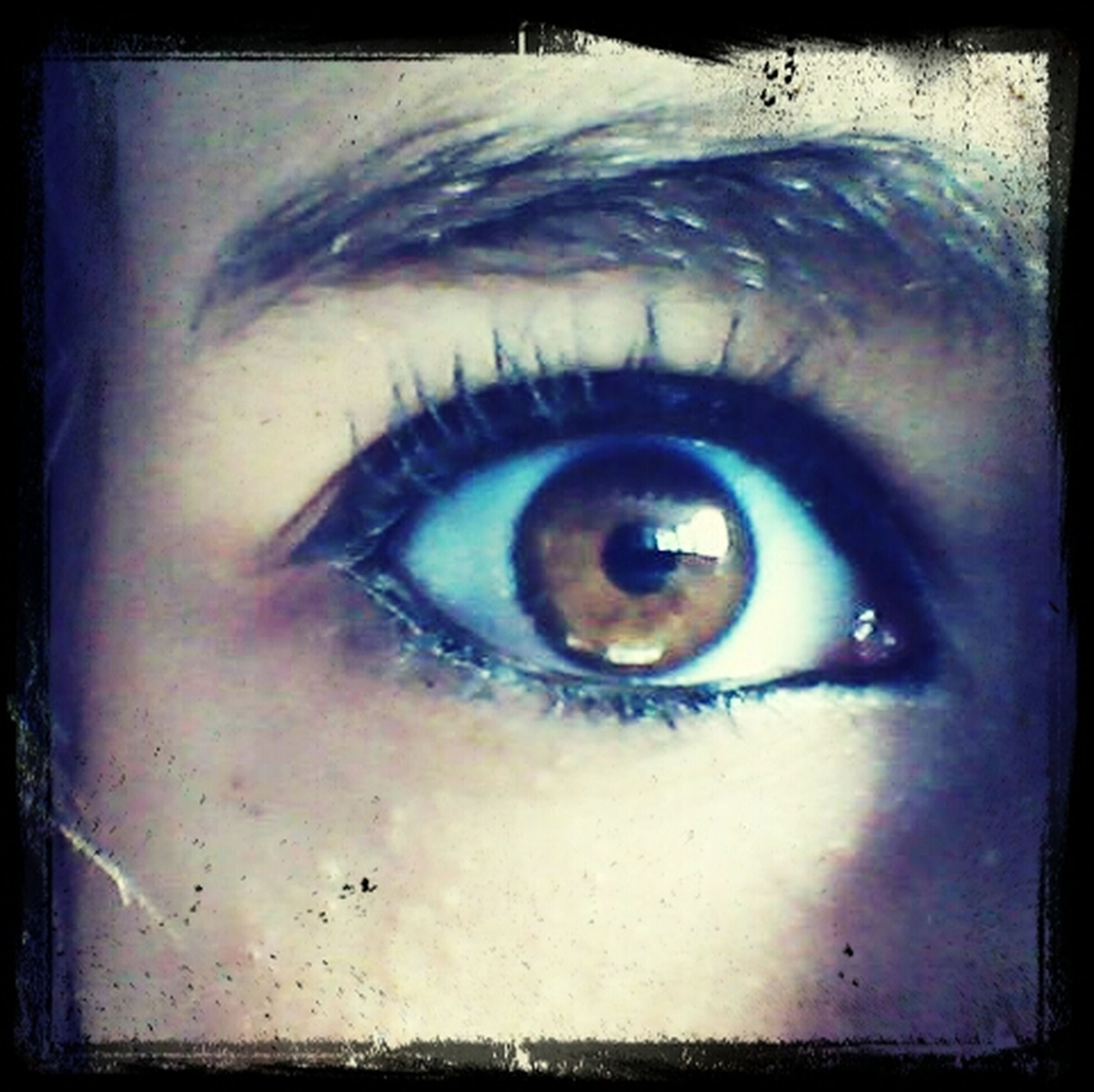 human eye, close-up, transfer print, portrait, looking at camera, eyelash, eyesight, auto post production filter, indoors, sensory perception, human face, part of, lifestyles, iris - eye, extreme close-up, headshot, eyeball