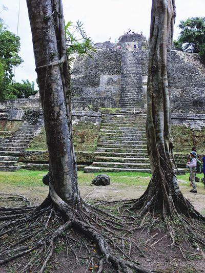Mayan magic and splendor Exploring Taking Photos Ancient Civilization Timeless Beauty Mayan Ruins Belize  Go Slow