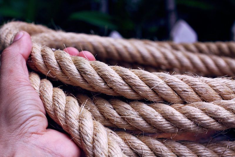 Cropped hand holding rope