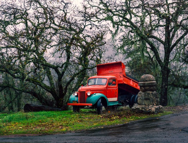 Tree Red Nature Branch Growth Beauty In Nature Tree Trunk No People Outdoors Day Tractor Truck Old Red California Napa Valley
