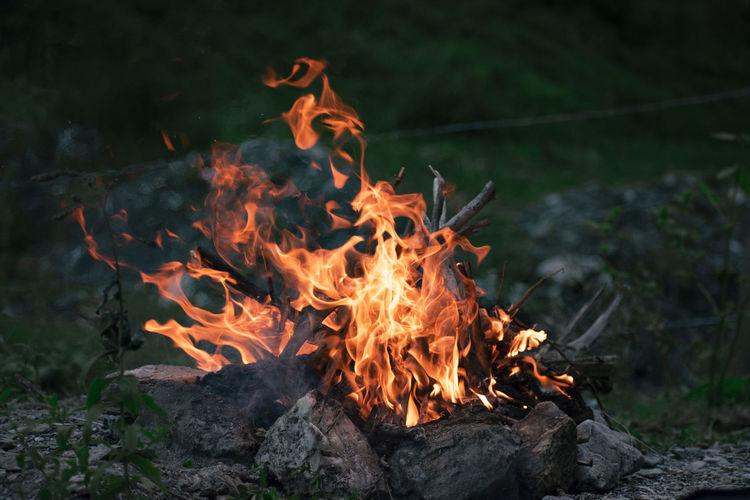 Close-up of burning campfire