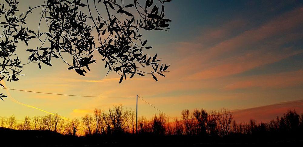 .l'alba di stamattina. Nature Beauty In Nature Scenics