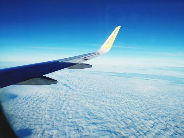 Airplane Aircraft Wing Flying Aerial View Travel Sky Cloud - Sky Commercial Airplane Nature No People High Up Air Vehicle Outdoors Day EyeEmNewHere Eyeemphotography Eyeem View Long Goodbye Goodbye Eyeempopularphotos