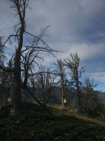 Montana Wildlife Photography Wildlandfirefighter Outdoor Photography Scenics Lamdscape