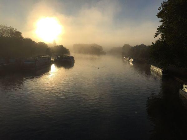 Caversham Bridge, Reading. Landscape Nature River Silhouette River Thames Fog Mist Moody Water Sun Sunrise