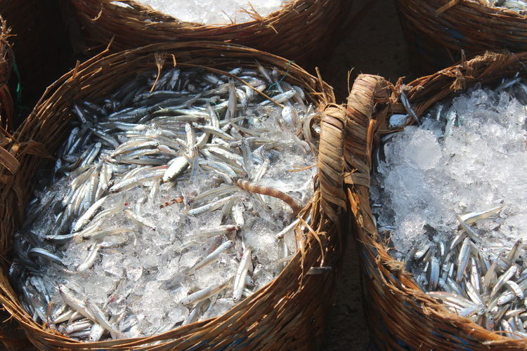 Fishes in bamboo baskets with ice at Mui Ne beach Fishing Village Ice Mui Ne, Vietnam Bamboo Basket Basket Close-up Day Fish Food Freshness Healthy Eating High Angle View No People Outdoors Raw Food Seafood
