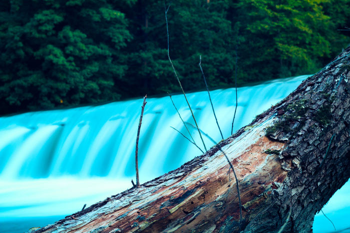 Tree Water Outdoors Nature Day No People Forest Beauty In Nature Motion Wood Bayern Photography Bavaria Canon Outside River Power In Nature Waterfall Long Exposure Natur Wald Summer Blue Sea Landscape