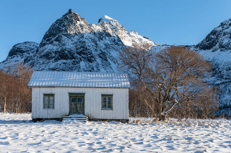 Norway Northern Norway Lofoten Lofoten Islands Nordland Winter Wintertime Cottage House Sky Architecture Nature Built Structure No People Scenics - Nature Landscape Snow Cold Temperature Building Exterior Covering Tree Building White Color Land Beauty In Nature Day Mountain Frozen Snowcapped Mountain
