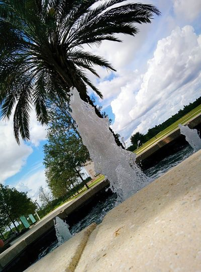 Clouds Water Fountain Water Drops Clock Tower In Barkground Collegelife Walking Around Campus Chilling Forest In Background Sideways Picture Plam Tree