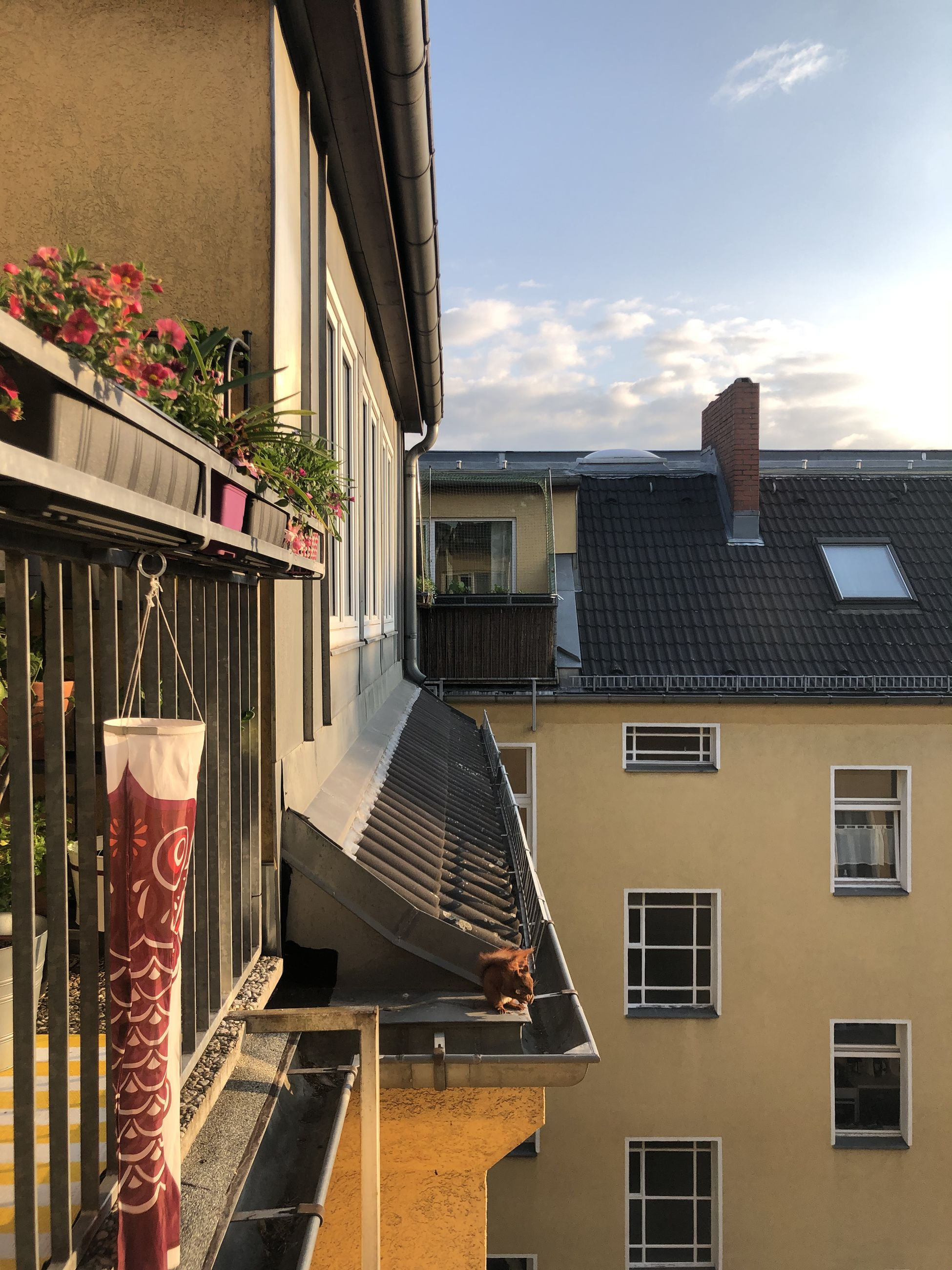 building exterior, architecture, built structure, window, residential district, building, sky, nature, city, house, day, no people, outdoors, sunlight, cloud - sky, balcony, roof, apartment, low angle view, glass - material, window box