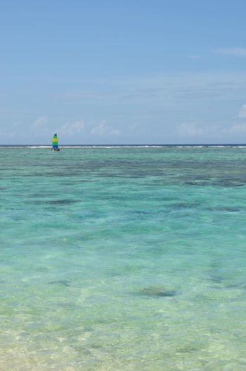 Windsurfer and Tumon Bay, Guam Beauty In Nature Nature Tranquility Blue Outdoors Beach Sea Idyllic