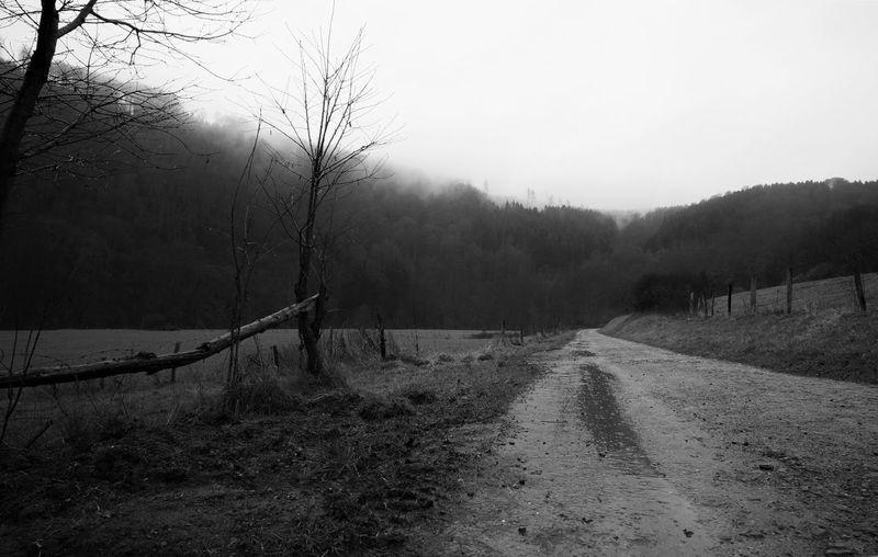 Eifel Blackandwhite Black And White Black & White Monochrome Blackandwhite Photography Nature Foggy View Path Nature_collection