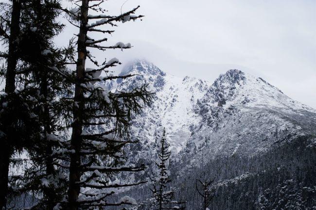 Tatry-Slovakia Tatry Mountains Tatry Slovakia🇸🇰 Slovakia Photos Slovakianature Mountain Nature Cute♡ Snow ❄