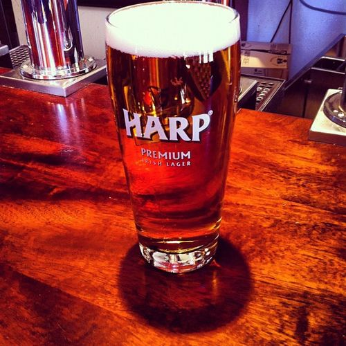 Pints Beer Harp Harplager yummy downtown vancouver longweekend goodfriday elephant castle elephantandcastle
