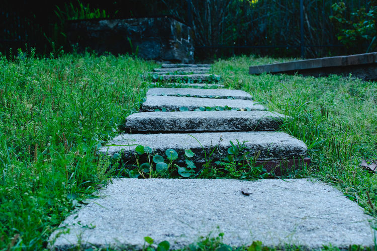 Stone steps to