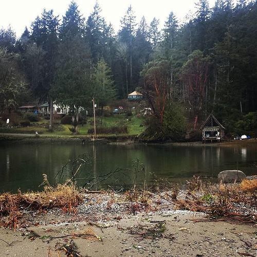I had the best time back in Cali but I'm glad to be home Washington PNW Beachlife Goodtobehome Yurt Boathouse RainyDay Mayocove