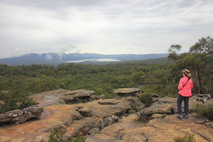 The sandstone cliff of Reeds Lookout in mountain range of Grampians National Park. Australia Australian Landscape Be. Ready. Grampian National Park Reeds Lookout The Grampians Travel Victoria Australia Hiking Mountain Range Scenics Travel Destinations