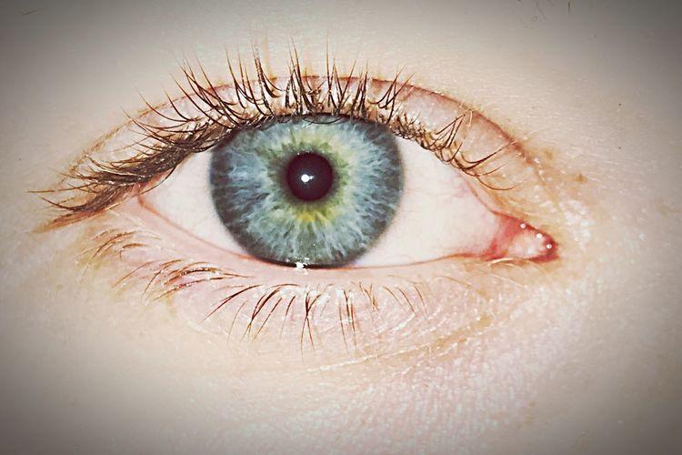 🌊👁 EyeEmNewHere Real People Eyelash Human Eye One Person Sensory Perception Human Body Part Close-up Eyesight Eyeball Lifestyles Iris - Eye Day People EyeEmNewHere