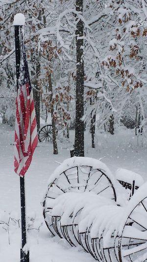 My Winter Wonderland American Flag Vintage Wagon Wheel Hay Rack Ride February February 2016 Snow Storm Snow ❄ Lexi Maine