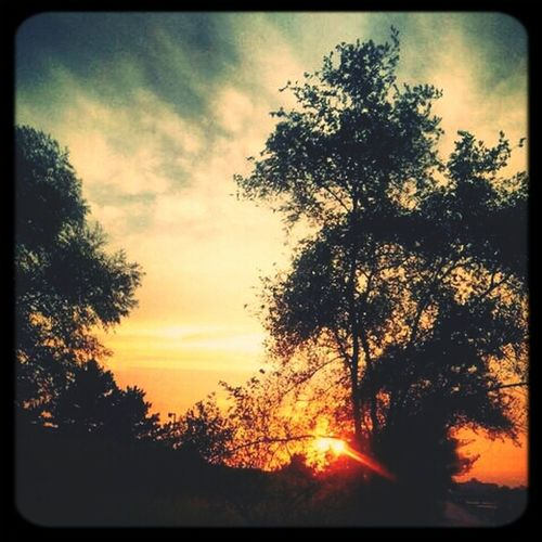 Sunset Setset
